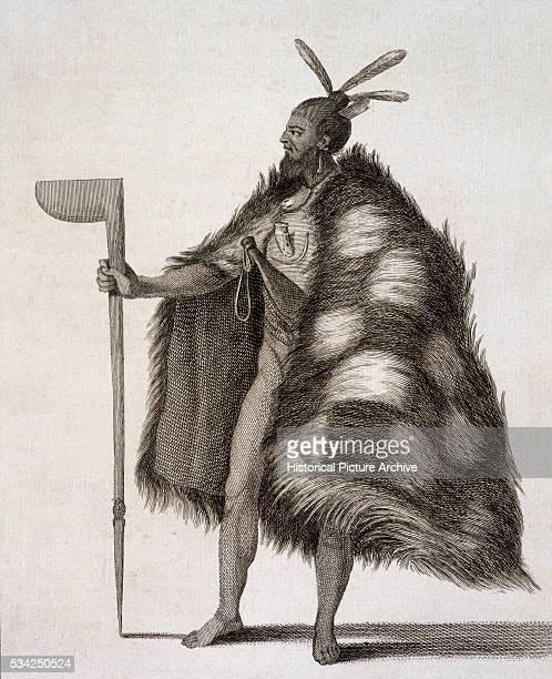 New Zealand Warrior