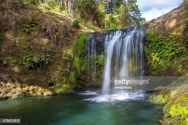 new zealand waterfalls - auckland stock pictures, royalty-free photos & images