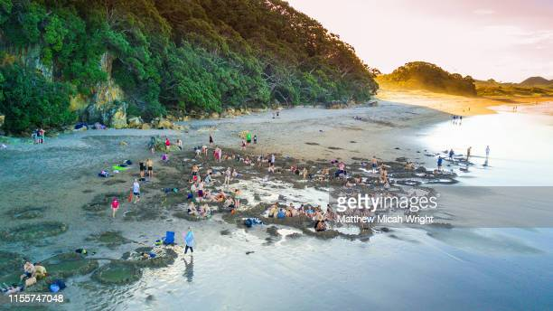 new zealand's famed hot water beach is a must stop for many after leaving auckland. holes are dug into the beach and hot geothermal water creats natural spa pools. - hot spring stock pictures, royalty-free photos & images