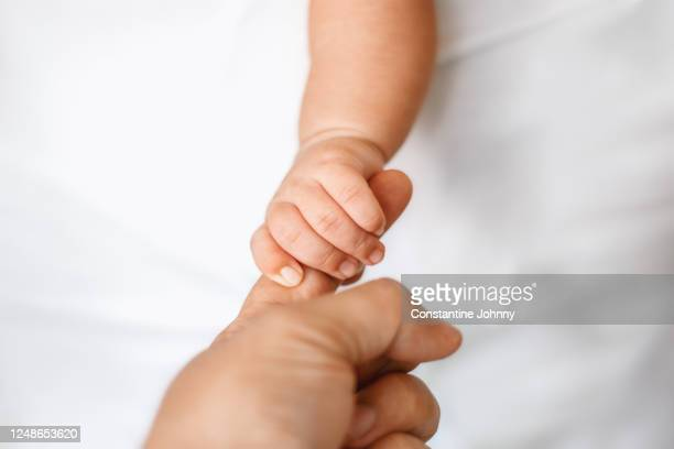 newborn baby holding adult finger - beginnings stock pictures, royalty-free photos & images
