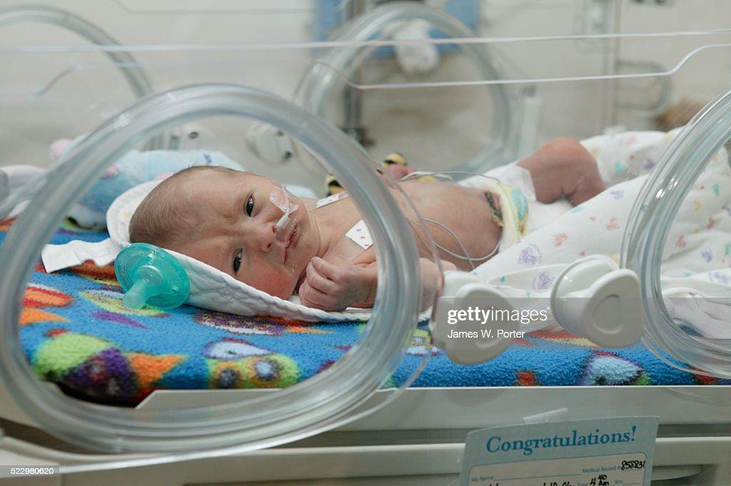 Newborn Baby in Incubator : Stock Photo