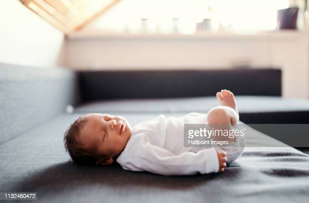a newborn baby lying on sofa and at home, eyes closed. - innocence stock pictures, royalty-free photos & images
