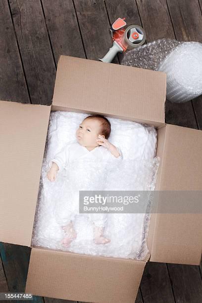 新生児を発送