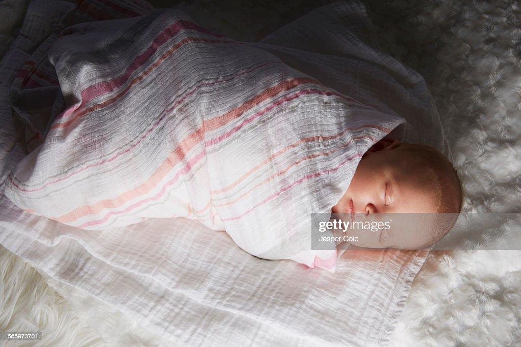 Newborn baby swaddled in blanket : Stock Photo