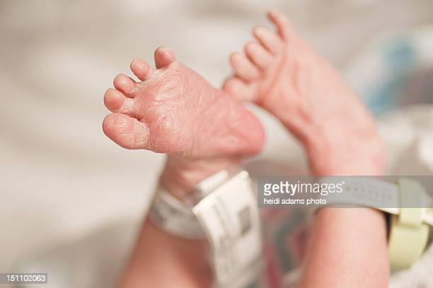 newborn feet in hospital setting - adams tennessee stock pictures, royalty-free photos & images