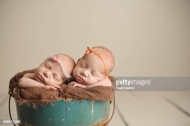 生まれたばかりの双子の女の子 - 小道具 ストックフォトと画像