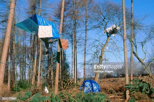 Newbury bypass constuction protestors, 2000.