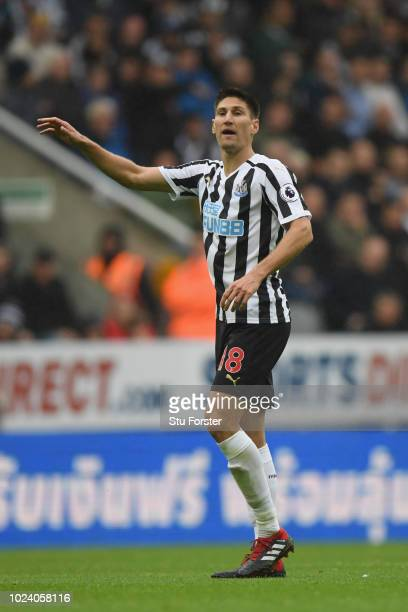 Newcastle defender Federico Fernandez in action on his home debut during the Premier League match between Newcastle United and Chelsea FC at St James...