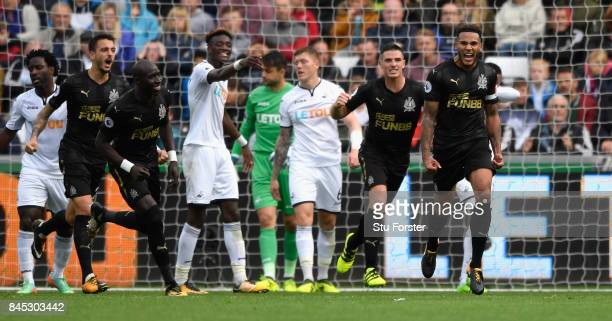 Newcastle goalscorer Jamaal Lascelles celebrates after scoring the winning goal during the Premier League match between Swansea City and Newcastle...