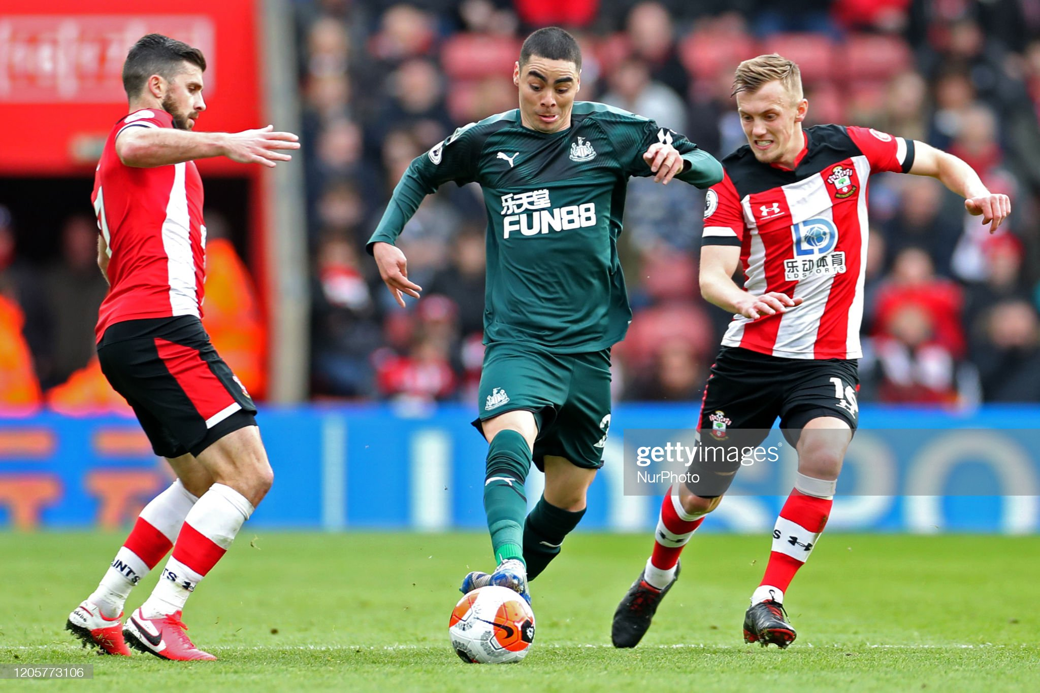Southampton vs Newcastle Preview, prediction and odds