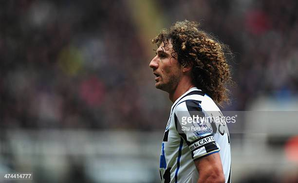 Newcastle player Fabricio Coloccini looks on during the Barclays Premier League match between Newcastle United and Aston Villa at St James' Park on...