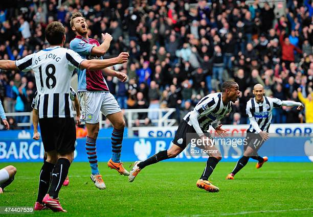 Newcastle player Loic Remy celebrates after scoring the winning goal during the Barclays Premier League match between Newcastle United and Aston...