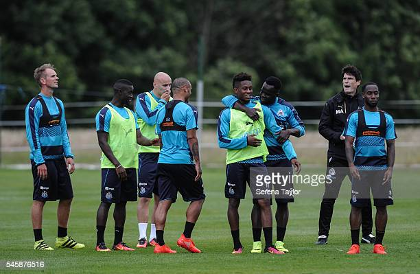 Newcastle players seen LR Siem de Jong Henri Saivet Jonjo Shelvey Yoan Gouffran Rolando Aarons Cheick Tiote and Vurnon Anita talk on the pitch during...