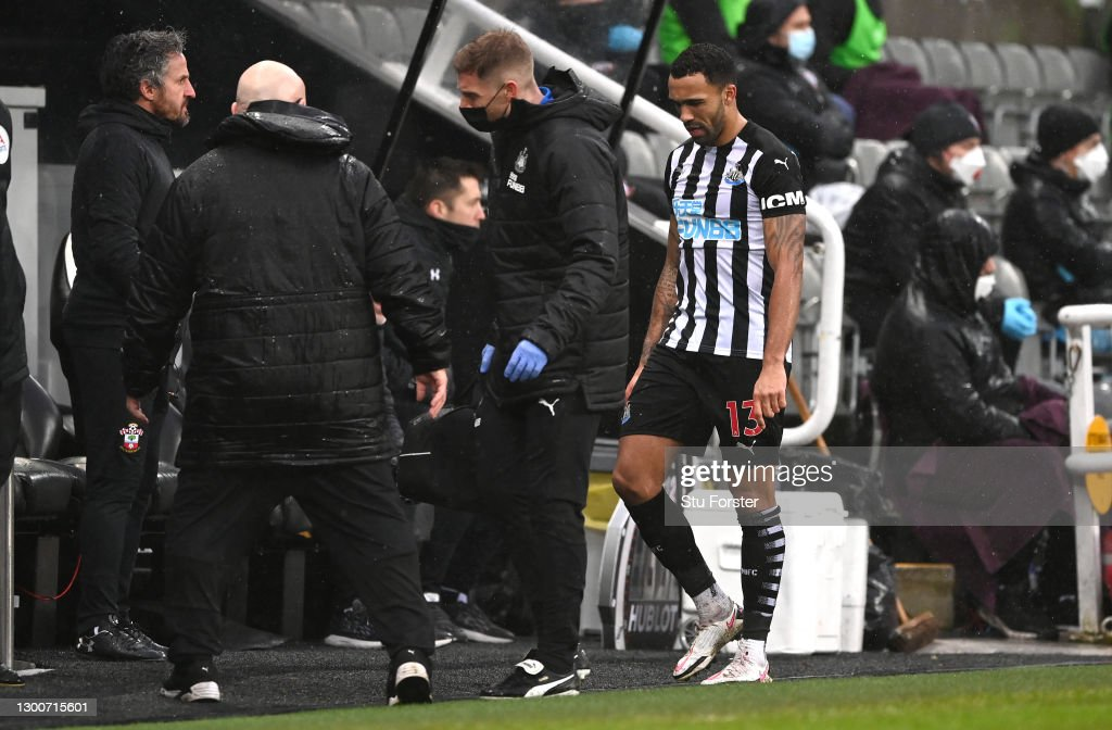 Newcastle United v Southampton - Premier League : News Photo
