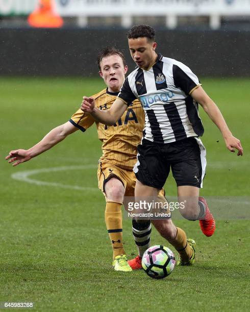 Christian Eriksen In Tottenham Hotspur V Newcastle United: Mace Goodridge Stock Photos And Pictures