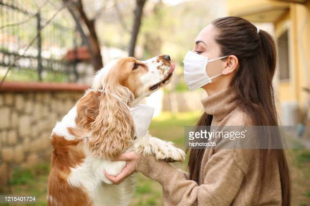 nyare ensam när du har hund - munskydd ensam bildbanksfoton och bilder