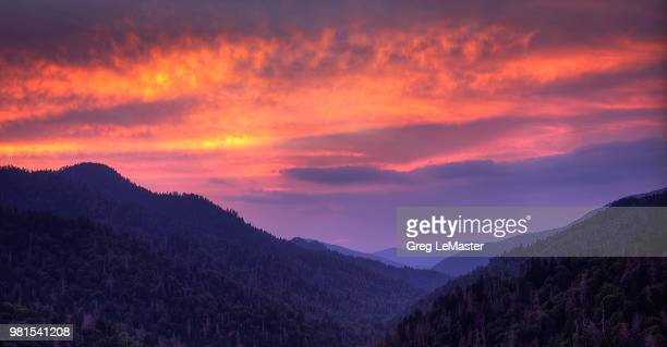 newfound gap overlook - newfound gap stock photos and pictures