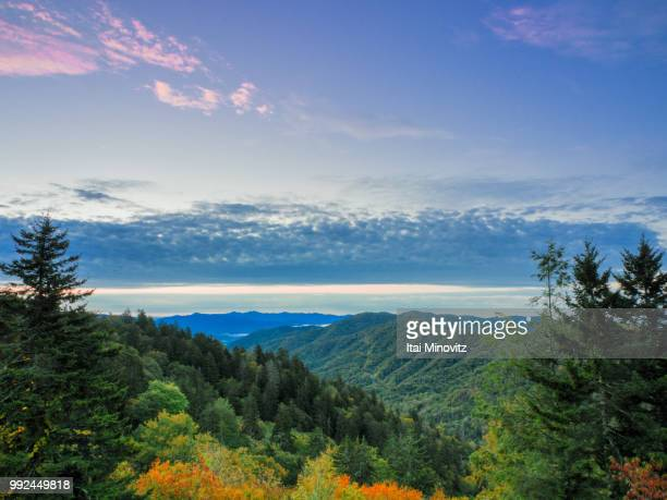 newfound gap. - newfound gap stock pictures, royalty-free photos & images
