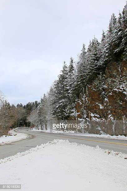 newfound gap rd - newfound gap stock photos and pictures