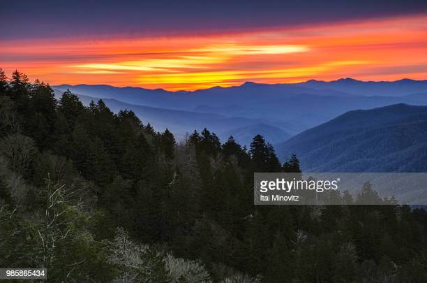 newfound gap sunrise. - newfound gap stock pictures, royalty-free photos & images
