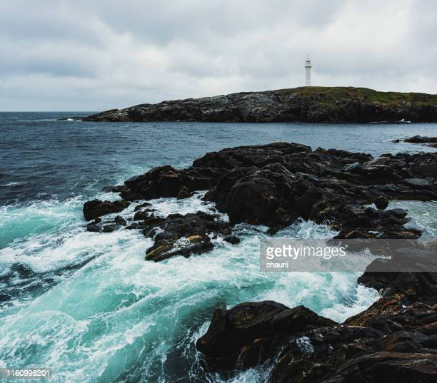 newfoundland lighthouse - newfoundland and labrador stock pictures, royalty-free photos & images
