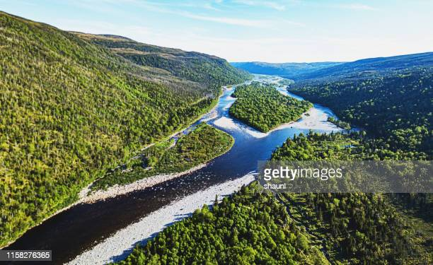 newfoundland river - newfoundland and labrador stock pictures, royalty-free photos & images