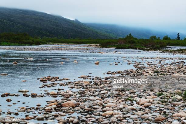 newfoundland river - riverbank stock pictures, royalty-free photos & images