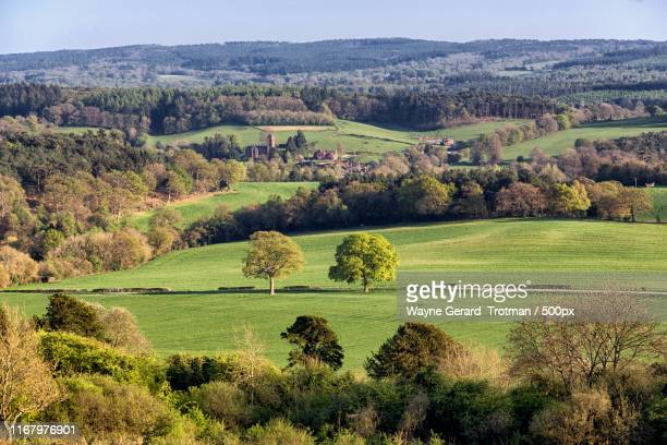 newlands corner - wayne gerard trotman stock pictures, royalty-free photos & images
