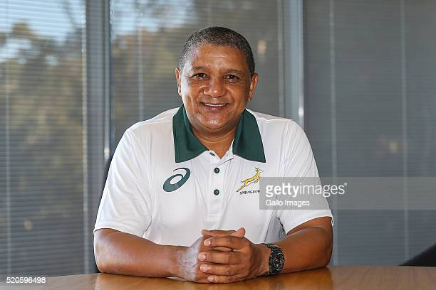 Newly appointed Springbok coach Allister Coetzee poses during a portrait session at SA rugby offices in Plattekloof on April 07 2016 in Cape Town...