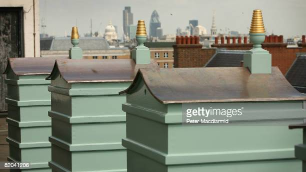 Newly installed behive sit on the roof at Fortnum and Mason on July 22 2008 in London Each hive currently contains 4000 Carnolian bees from the...