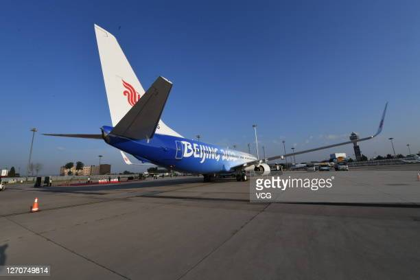 A newly painted Boeing 737 aircraft of Air China with patterns of the emblems and mascots of Beijing 2022 Winter Olympics sits parked during a...