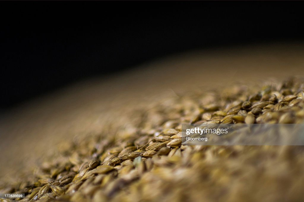 Newly-harvested barley grain sits in a warehouse before bagging in Cervera, Spain, on Thursday, July 4, 2013. Spain consumes about 28 million to 30 million tons of grain a year, of which two-thirds is produced domestically, according to young farmers organization Asaja. Photographer: David Ramos/Bloomberg via Getty Images