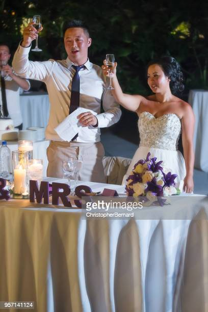 newlywed cheering at reception - drunk mexican stock pictures, royalty-free photos & images
