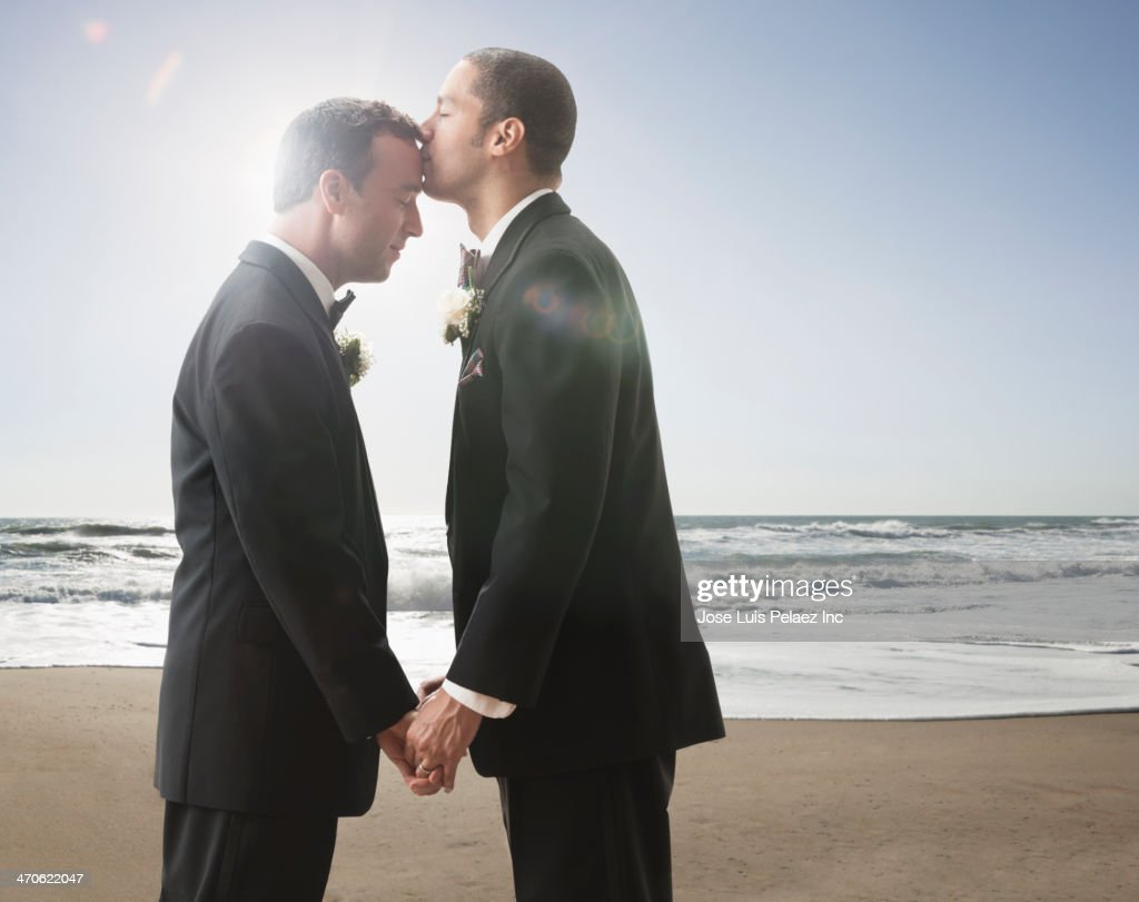 Newlywed grooms kissing : Stock Photo