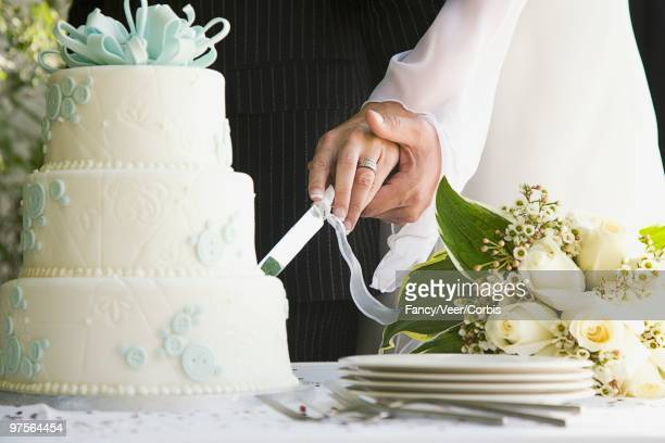 Newlyweds slicing wedding cake