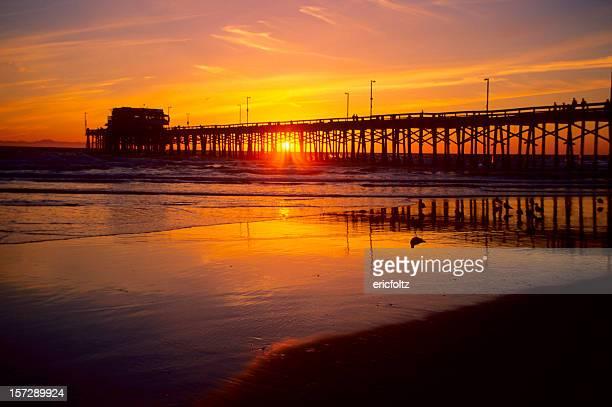 newport pier - newport beach california stock photos and pictures