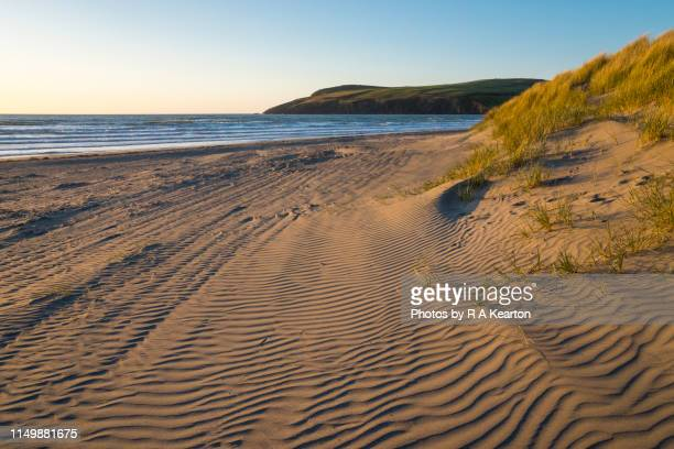 newport sands, pembrokeshire, wales - newport wales stock pictures, royalty-free photos & images