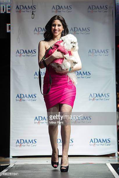 News Anchor Diana Falzone with dog Baily walk the runway at the 12th Annual Animalfaircom Paws For Style Fashion Show at Pacha on May 13 2014 in New...