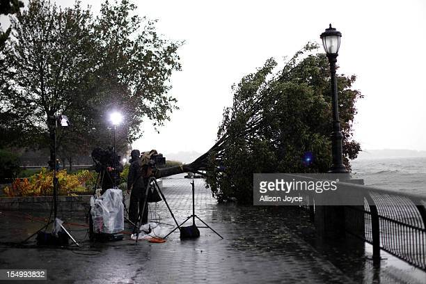 A news crew works next to a fallen tree October 30 2012 in the Battery Park neighborhood of Manhattan New York The storm has claimed at least 33...