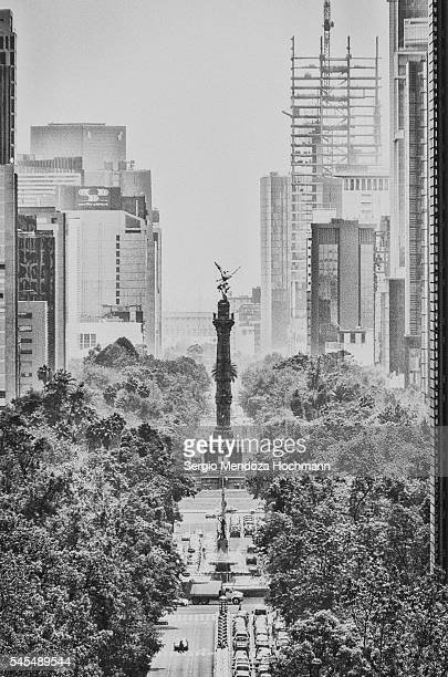 ángel de la independencia - mexico city, mexico - mexico black and white stock pictures, royalty-free photos & images