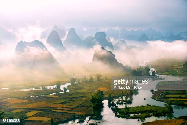 ngoc con field - vietnam stock pictures, royalty-free photos & images
