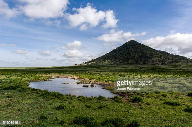 a small waterhole at the base of a pointed hill on the savannah. - waterhole stock pictures, royalty-free photos & images