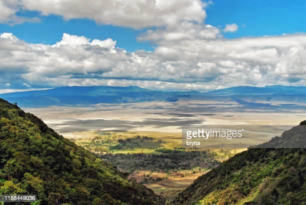 ngorongoro crater in tanzania - caldera stock pictures, royalty-free photos & images