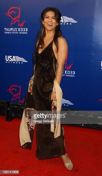 Nia Peeples during The 3rd Annual World Stunt Awards Arrivals at Paramount Studios in Los Angeles California United States
