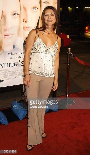 Nia Peeples during White Oleander Premiere Los Angeles at Grauman's Chinese Theatre in Hollywood California United States