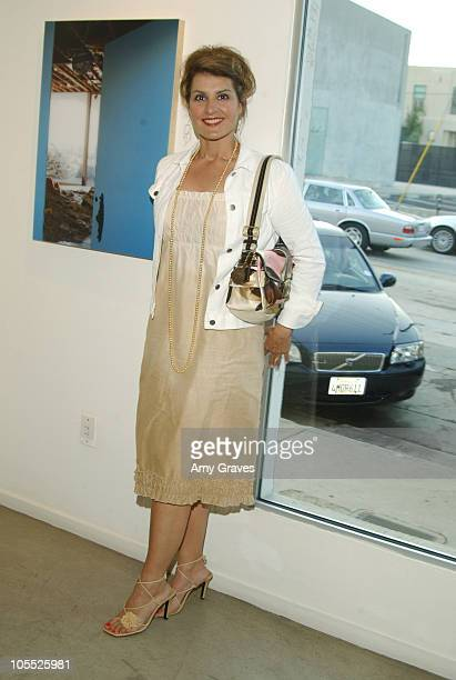 Nia Vardalos during Alexandra Hedison building Show Opening Reception at White Room Gallery in West Hollywood California United States