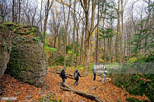 niagara glen trail - wildlife reserve stock pictures, royalty-free photos & images
