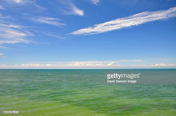 niagara on  lake, view over lake ontario, wine - lake ontario stock pictures, royalty-free photos & images