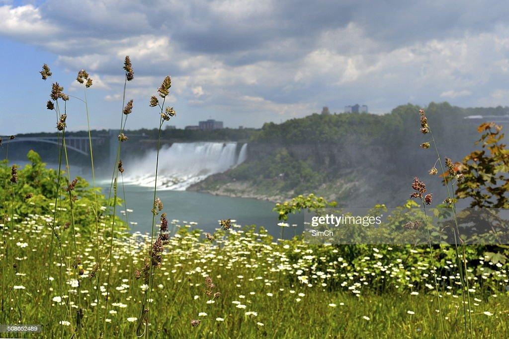Niagara waterfall and a bridge : Stock Photo