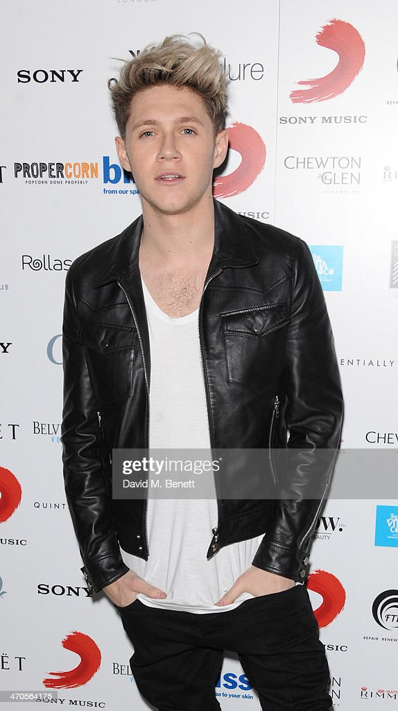 Niall Horan attends The BRIT Awards 2014 Sony after party on February 19, 2014 in London, England.